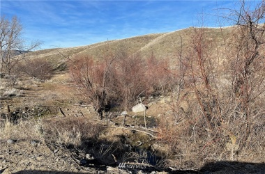 1 XXXX Strahl & Alemeda Flats Road, Grand Coulee, Washington 99133, ,Land,For Sale,Strahl & Alemeda Flats,NWM1737267