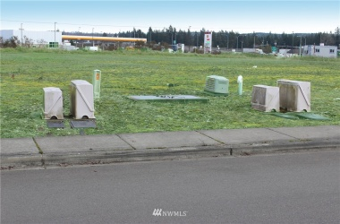 19602 Vision Drive, Rochester, Washington 98579, ,Commercial Sale,For Sale,Vision,NWM1759289